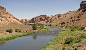 Owhyee river
