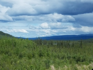 lake tok to fairbanks